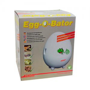 incubadora huevos reptiles