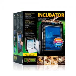 incubadora temperatura y humedad reptiles