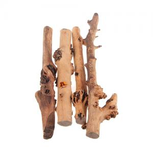 Ramas madera terrario