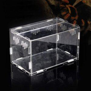Terrario Tortugas transparente