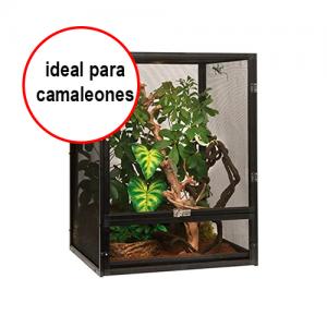 terrario camaleones